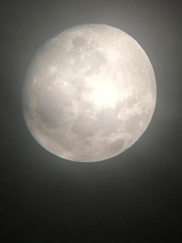 Guarda Che Luna! Foto Luna